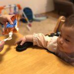【実食レポ】おすすめオーガニックベビーフードを生後7ヶ月の赤ちゃんが食べてみた|ベビーオルジェンテ|mamae(ママエ)