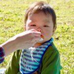 【離乳食】お出掛け編①デイリー|親戚や友人宅・公園|ベビーフードを活用しよう!|mamae(ママエ)
